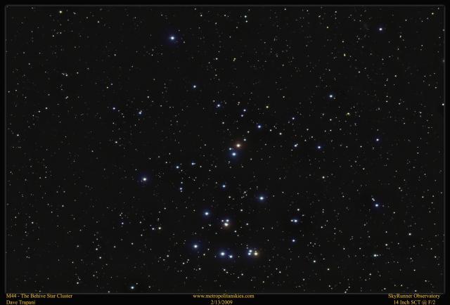 M44 Beehive